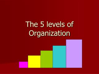 The 5 levels of Organization