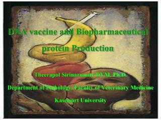 DNA vaccine and Biopharmaceutical protein Production
