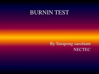 BURNIN TEST