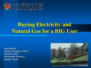 Buying Electricity and Natural Gas for a BIG User