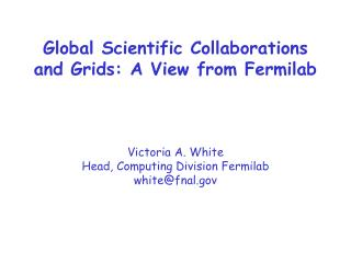 Global Scientific Collaborations and Grids: A View from Fermilab