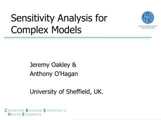 Sensitivity Analysis for Complex Models