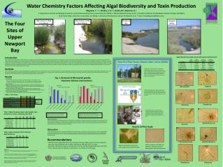 Water Chemistry Factors Affecting Algal Biodiversity and Toxin Production