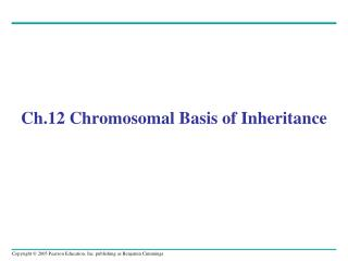 Ch.12 Chromosomal Basis of Inheritance