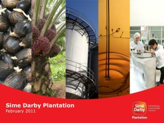 Sime Darby Plantation February 2011