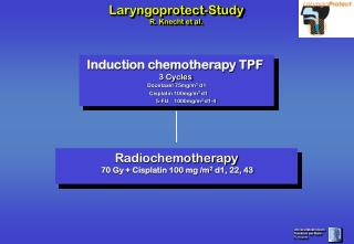 Induction chemotherapy TPF  3 Cycles Docetaxel 75mg/m 2  d1    Cisplatin 100mg/m 2  d1