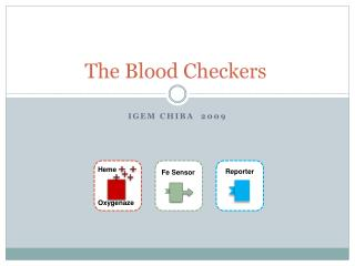 The Blood Checkers