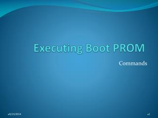 Executing Boot PROM