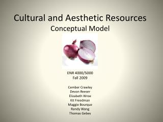 Cultural and Aesthetic Resources Conceptual Model