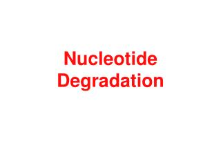Nucleotide Degradation
