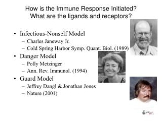 How is the Immune Response Initiated? What are the ligands and receptors?