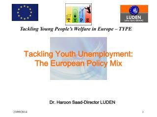 Tackling Youth Unemployment:  The European Policy Mix