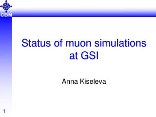Status of muon simulations at GSI