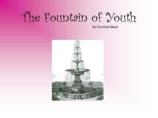 The Fountain of Youth by Courtney Meyer