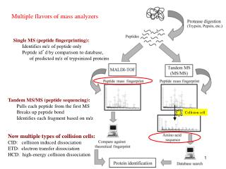 Multiple flavors of mass analyzers