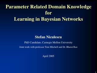 Parameter Related Domain Knowledge for Learning in Bayesian Networks