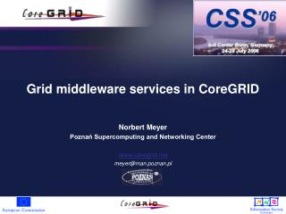 Grid middleware services in CoreGRID
