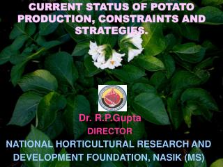 Dr. R.P.Gupta  DIRECTOR NATIONAL HORTICULTURAL RESEARCH AND DEVELOPMENT FOUNDATION, NASIK MS