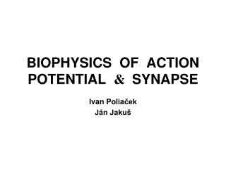 BIOPHYSICS  OF   ACTION  POTENTIAL &   SYNAPSE