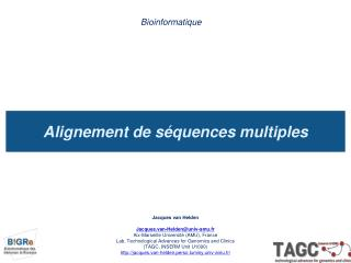 Alignement de séquences multiples