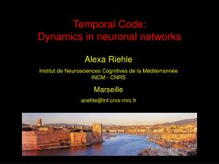 Temporal Code: Dynamics in neuronal networks
