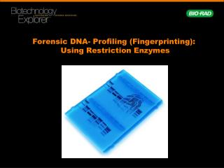 Forensic DNA- Profiling (Fingerprinting):  Using Restriction Enzymes