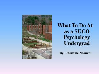What To Do At as a SUCO Psychology Undergrad By: Christine Noonan