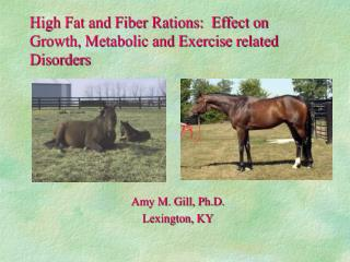 High Fat and Fiber Rations:  Effect on Growth, Metabolic and Exercise related Disorders