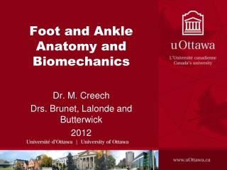 Foot and Ankle Anatomy and Biomechanics