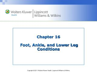 Chapter 16  Foot, Ankle, and Lower Leg Conditions
