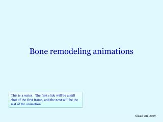 Bone remodeling animations