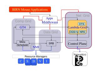 BIRN Mouse Applications
