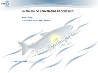 OVERVIEW OF SERVER-SIDE PROCESSING