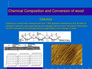 Chemical Composition and Conversion of wood