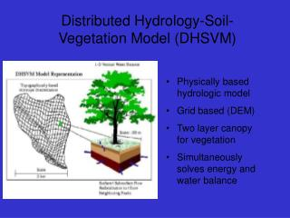 Distributed Hydrology-Soil-Vegetation Model (DHSVM)