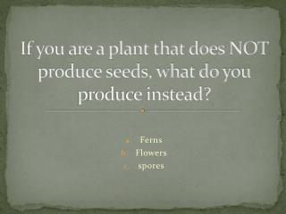 If you are a plant that does NOT produce seeds, what do you produce instead?