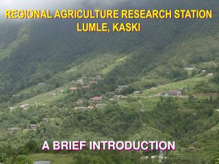 REGIONAL AGRICULTURE RESEARCH STATION LUMLE, KASKI A BRIEF INTRODUCTION