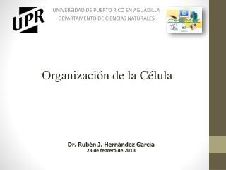 UNIVERSIDAD DE PUERTO RICO EN AGUADILLA DEPARTAMENTO DE CIENCIAS NATURALES