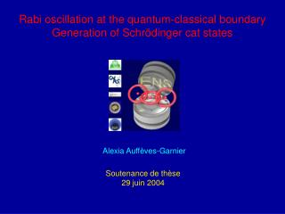Rabi oscillation at the quantum-classical boundary Generation of Schrödinger cat states