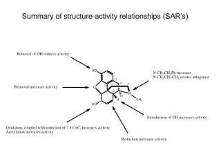 Summary of structure-activity relationships (SAR's)