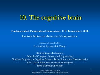 10. The cognitive brain