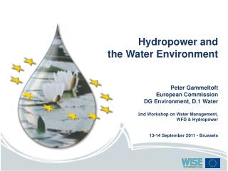 Hydropower and  the Water Environment Peter Gammeltoft European Commission