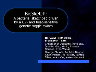 Harvard iGEM 2005 - BioSketch Team