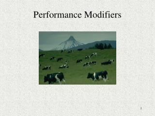 Performance Modifiers
