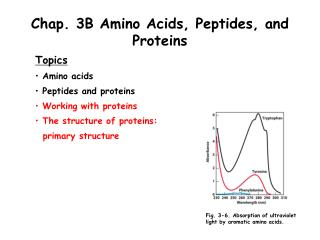 Chap. 3B Amino Acids, Peptides, and Proteins
