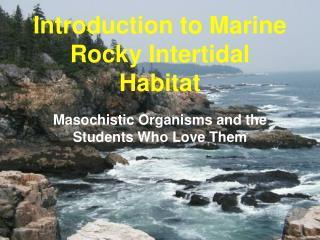 Introduction to Marine Rocky Intertidal Habitat