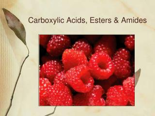 Carboxylic Acids, Esters & Amides