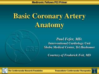 Basic Coronary Artery Anatomy