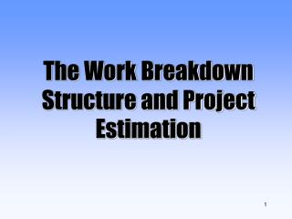 The Work Breakdown Structure and Project Estimation