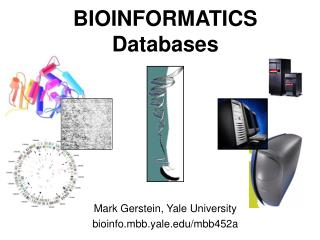 BIOINFORMATICS Databases